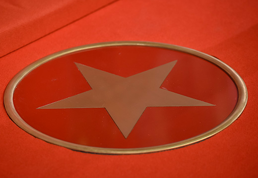 Symbolic photo for AS Biographies: Star on a red carpet